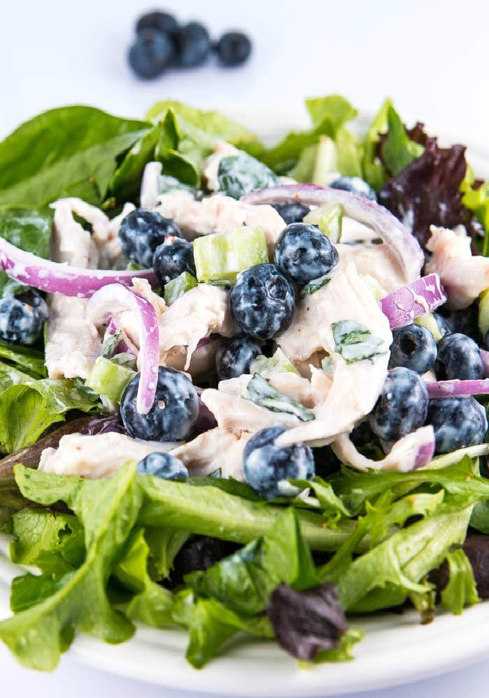 Blueberry_chicken_salad_closeup_blog