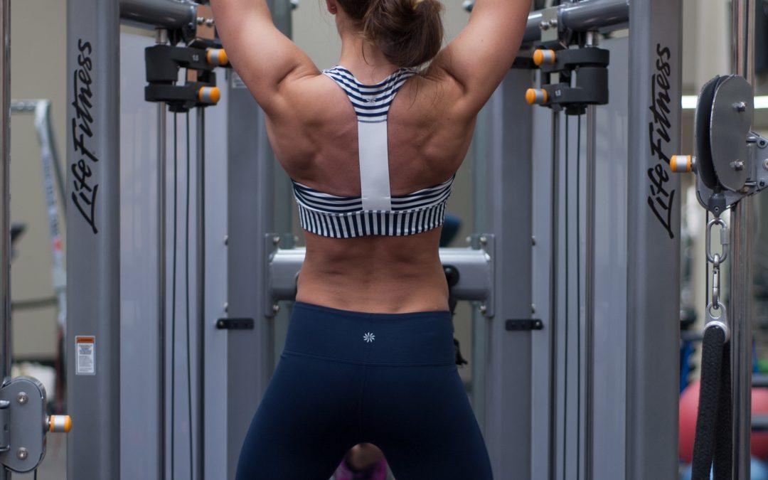 Free Back Workout 3