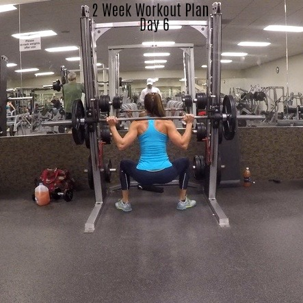 2 Week Workout Plan Day 6: Legs Triceps Abs