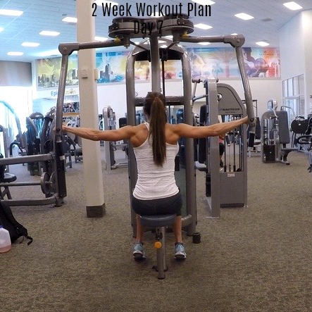 2 week workout plan day 7 back shoulders abs  fitness