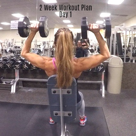 2 week workout plan day 1 shoulders back abs  fitness